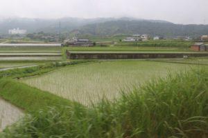 香川県まんのう町の田園風景