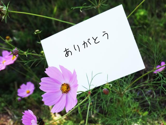 エッセイコンテスト<br/>第33回「小さな親切」はがきキャンペーン<br/>まもなく入賞発表!